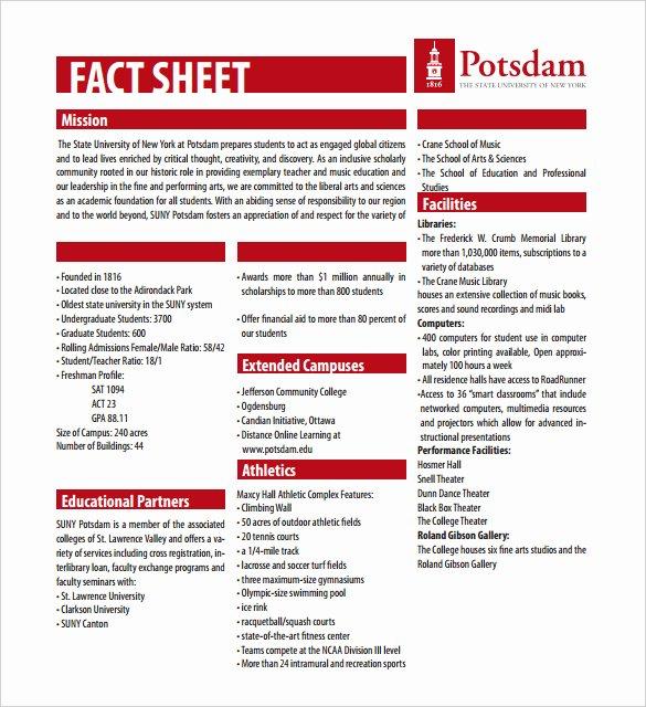 24 Fact Sheet Templates Pdf Doc