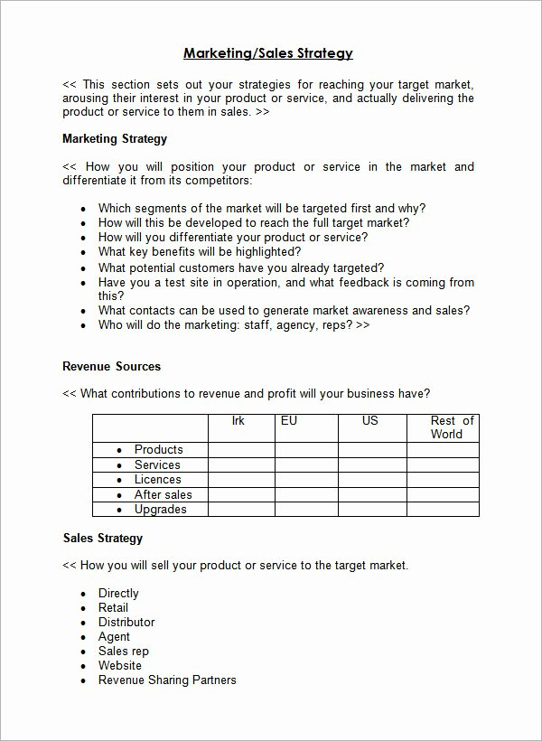 24 Sales Plan Templates – Pdf Rtf Ppt Word Excel