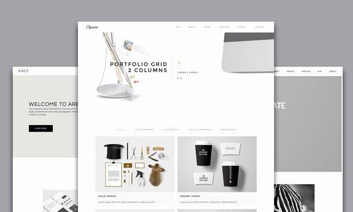 25 Best Creative Business Portfolio Adobe Muse Templates