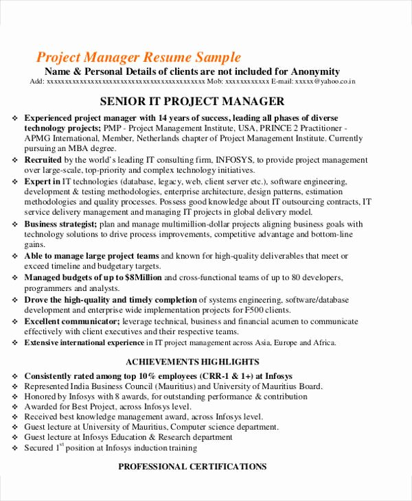25 It Resume Design Templates Pdf Doc