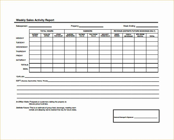 25 Sales Activity Report Templates Word Excel Pdf