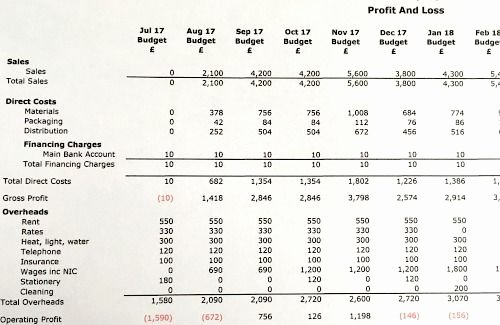 27 12 Month Profit and Loss Projection Template 12 Month