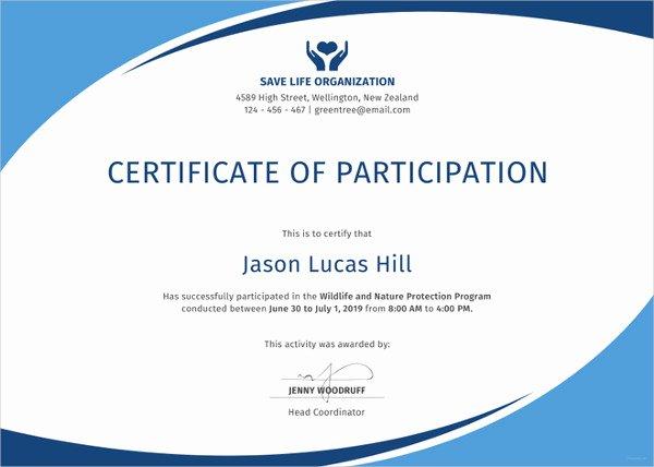 27 Participation Certificate Templates Pdf Doc Psd F