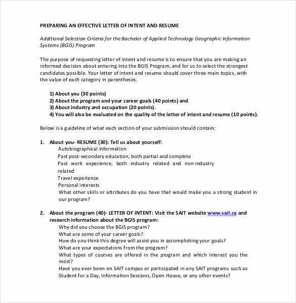 27 Simple Letter Of Intent Templates Pdf Doc