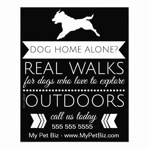 29 Best Images About Dog Walking On Pinterest