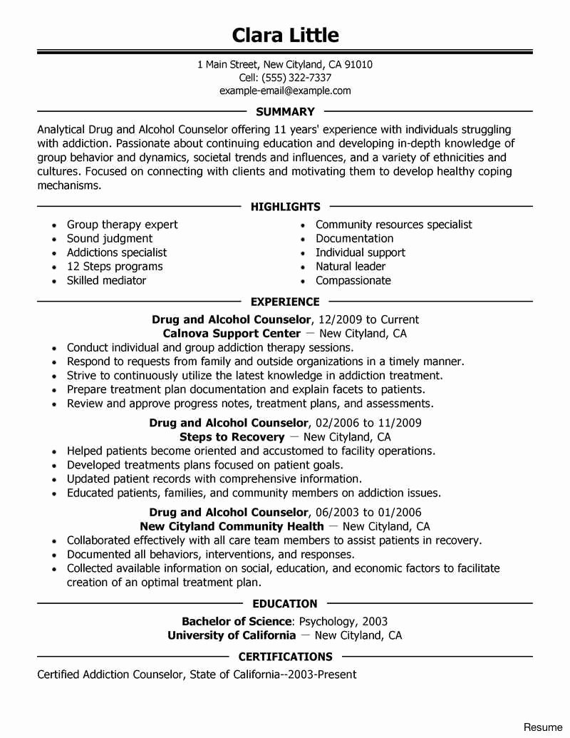 29 Expert Summer Camp Counselor Resume Va I