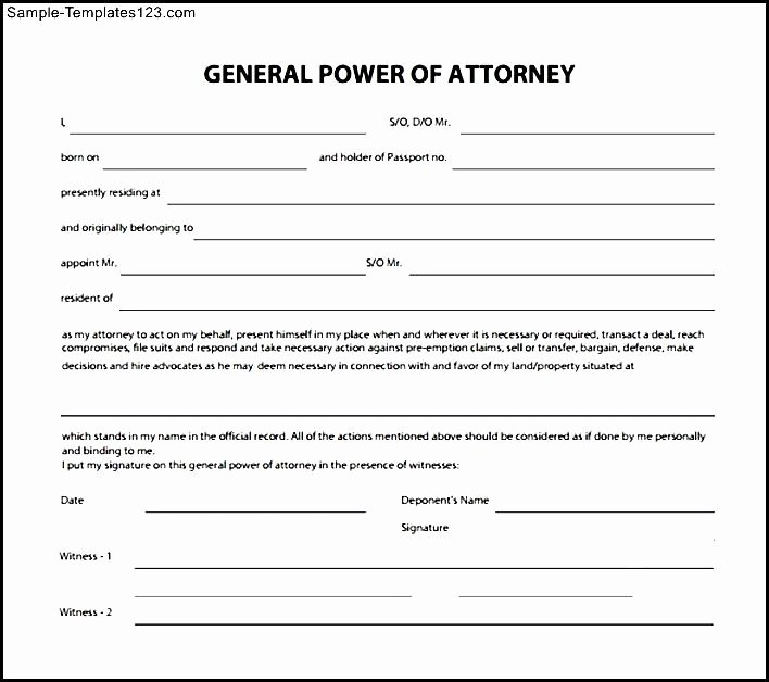 29 Of Basic Power attorney Template