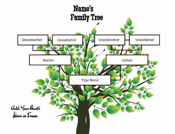 family tree templates three generations