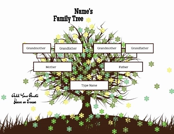 3 Generation Family Tree Generator