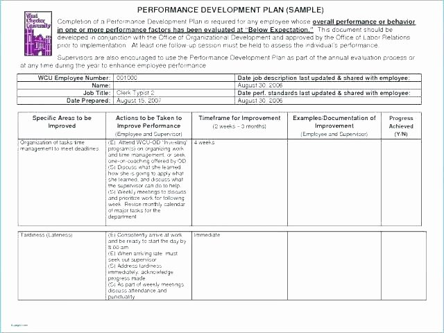30 Day Employee Review Template Lovely Individual Career