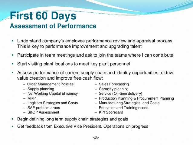 30 Day Performance Review Template 28 Images Best