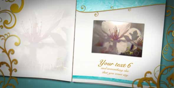 30 Sentimental Wedding after Effects Template Collection