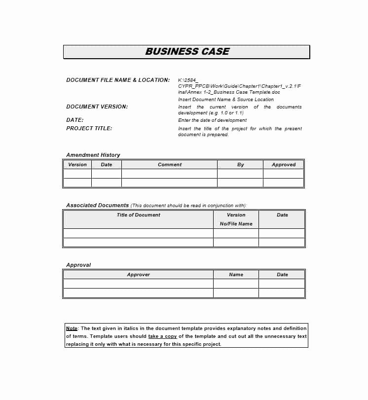 30 Simple Business Case Templates & Examples Template Lab