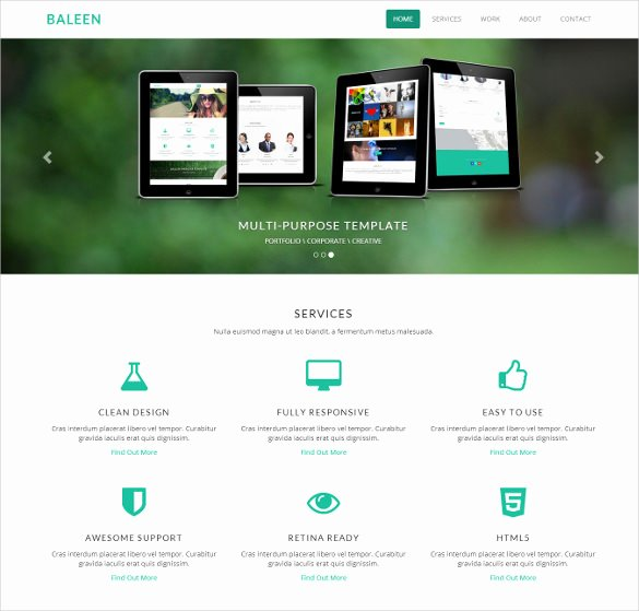 32 Parallax Website themes & Templates