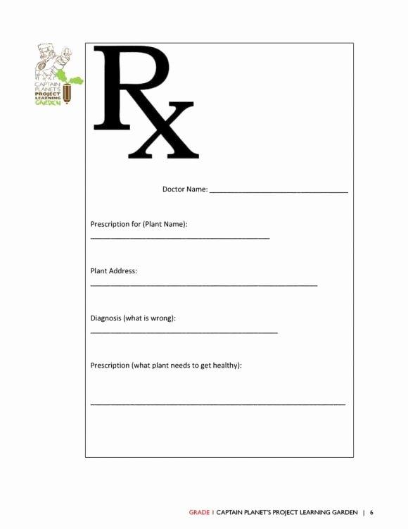 32 Real & Fake Prescription Templates Printable Templates