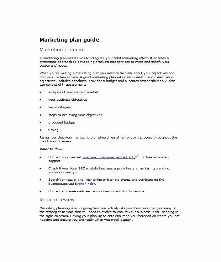 33 Free Professional Marketing Plan Templates Free