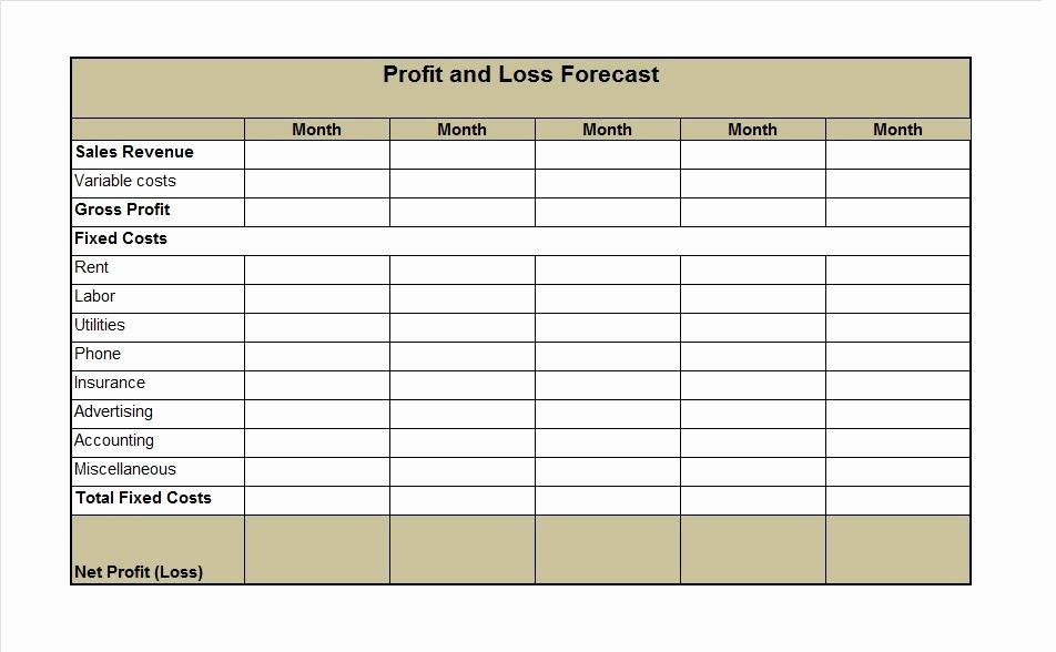 35 Profit and Loss Statement Templates & forms