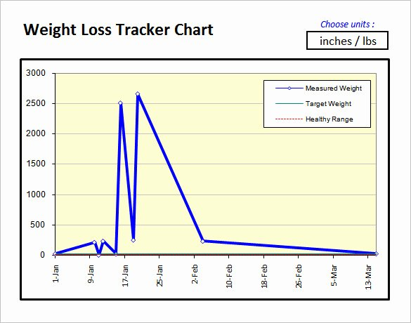 36 Excel Chart Templates