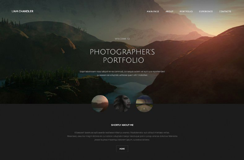 36 Portfolio Website themes & Templates
