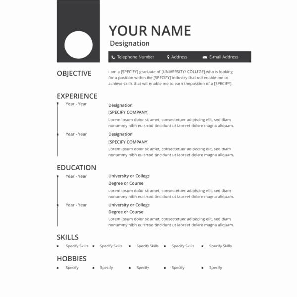 37 Printable Resume Templates Pdf Doc