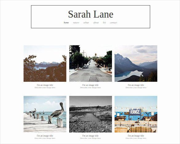 38 Free & Premium Graphy Website themes & Templates