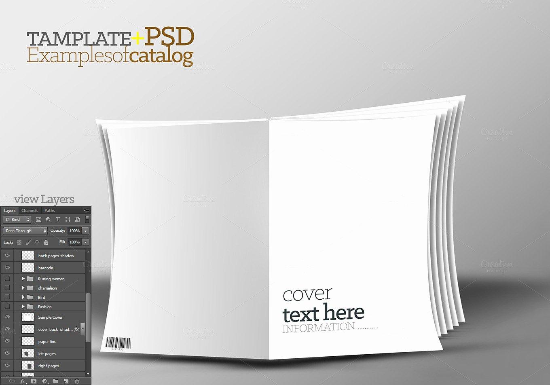 3d Template Catalog Psd Free File Designer