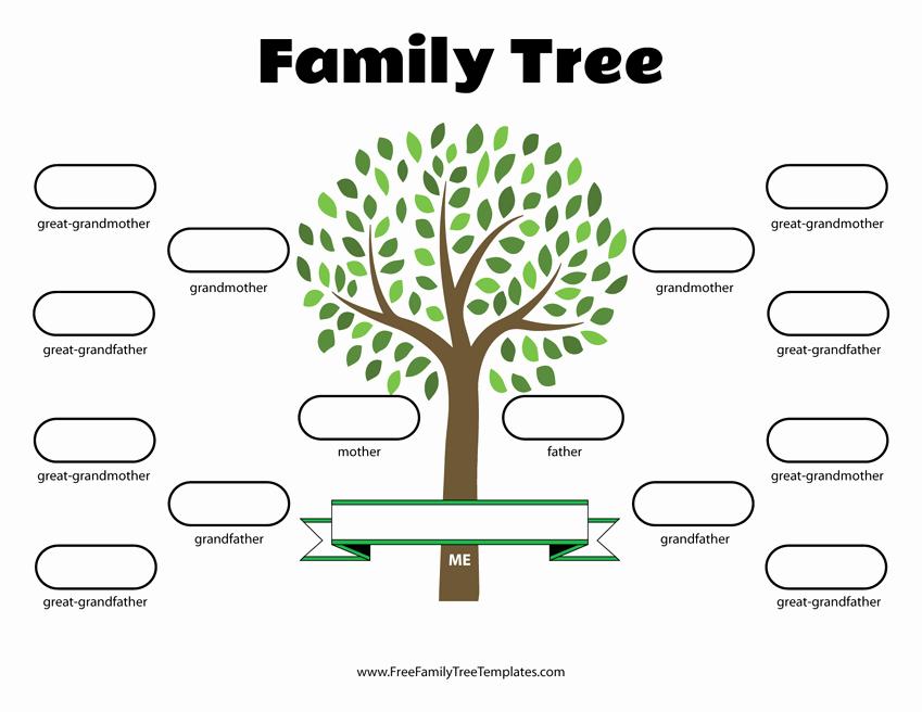 4 Generation Family Tree Template – Free Family Tree Templates