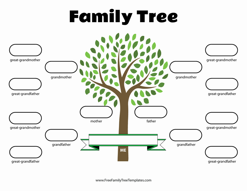 4 Generation Family Tree Template – Free Family Tree Templates
