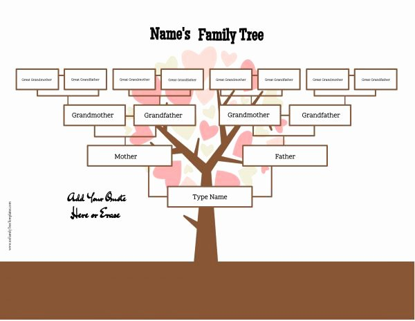 4 Generation Family Tree Template Free to Customize & Print