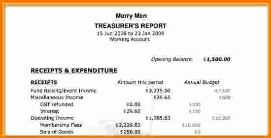 4 Treasurer Report Template