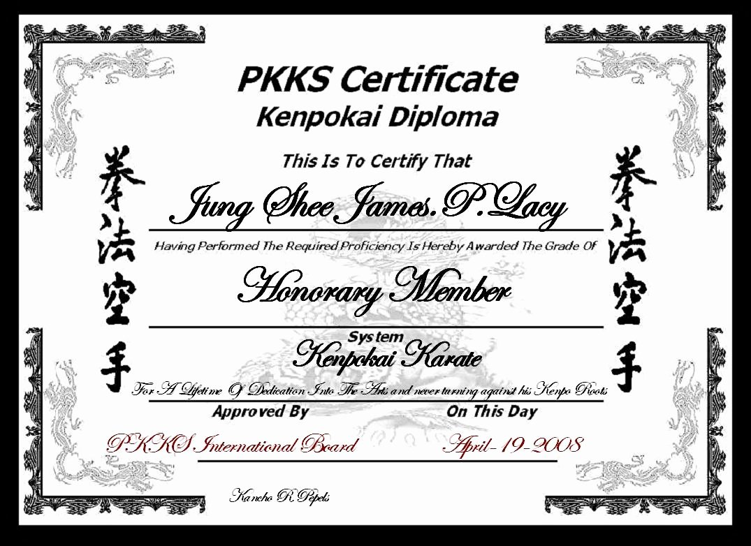 40 Martial Arts Certificate Templates Free Martial Art
