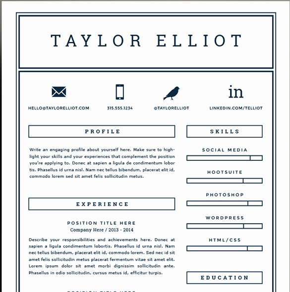 41 E Page Resume Templates Free Samples Examples