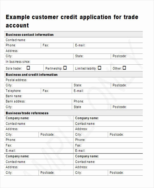 44 Sample Application form Templates