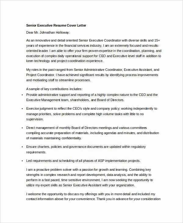 45 Executive Resume Templates Pdf Doc