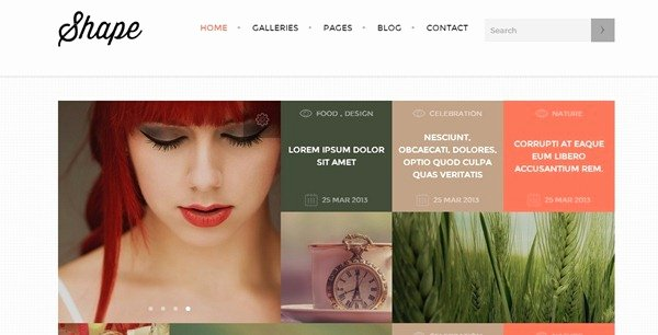 45 Professional Graphy Website Templates