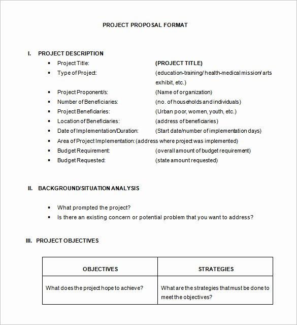 46 Project Proposal Templates Doc Pdf