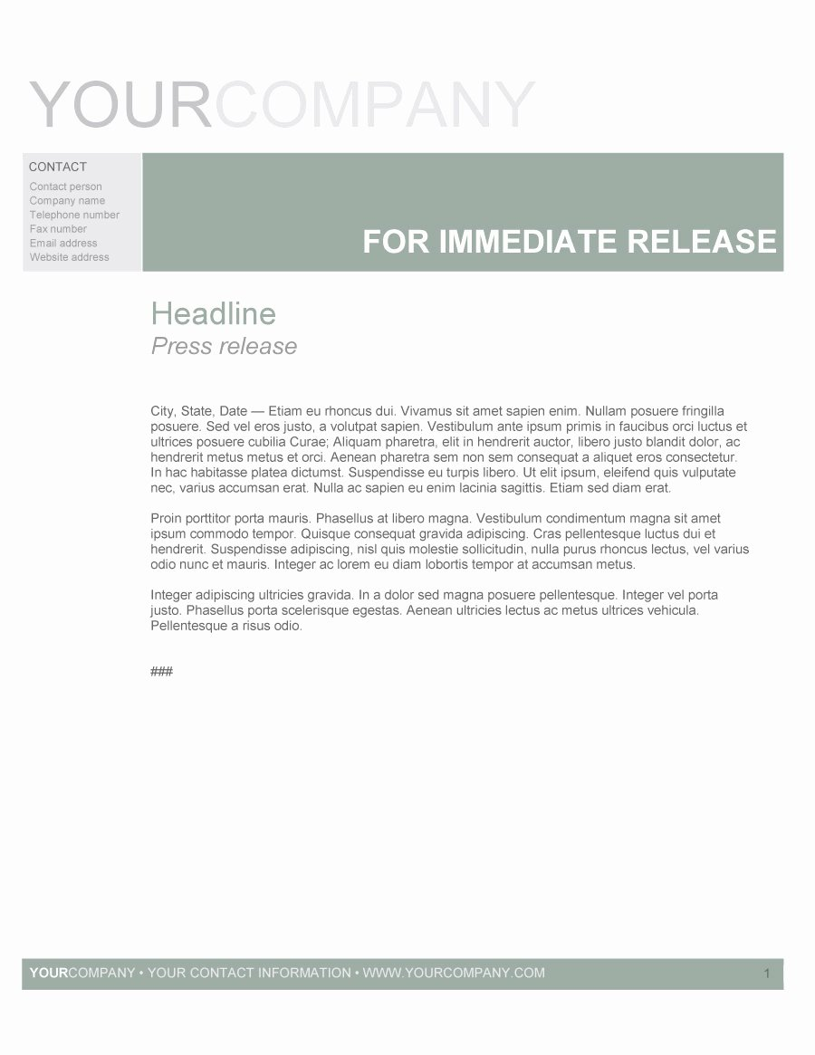 47 Free Press Release format Templates Examples & Samples