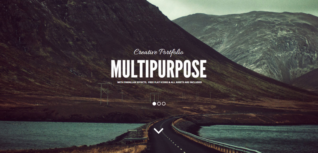 48 Best Adobe Muse Templates