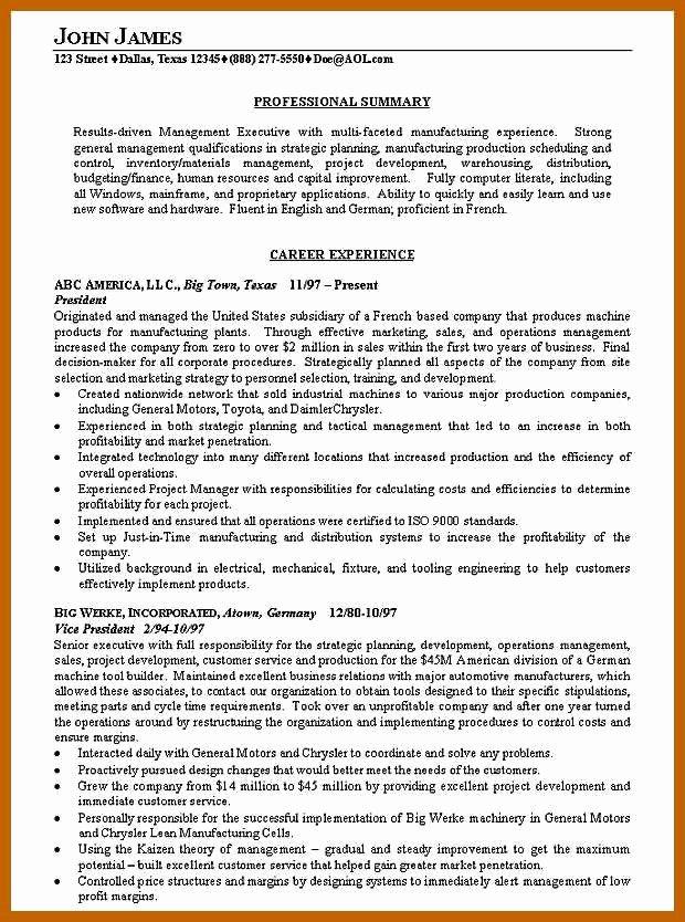 5 6 Resume Summary Example