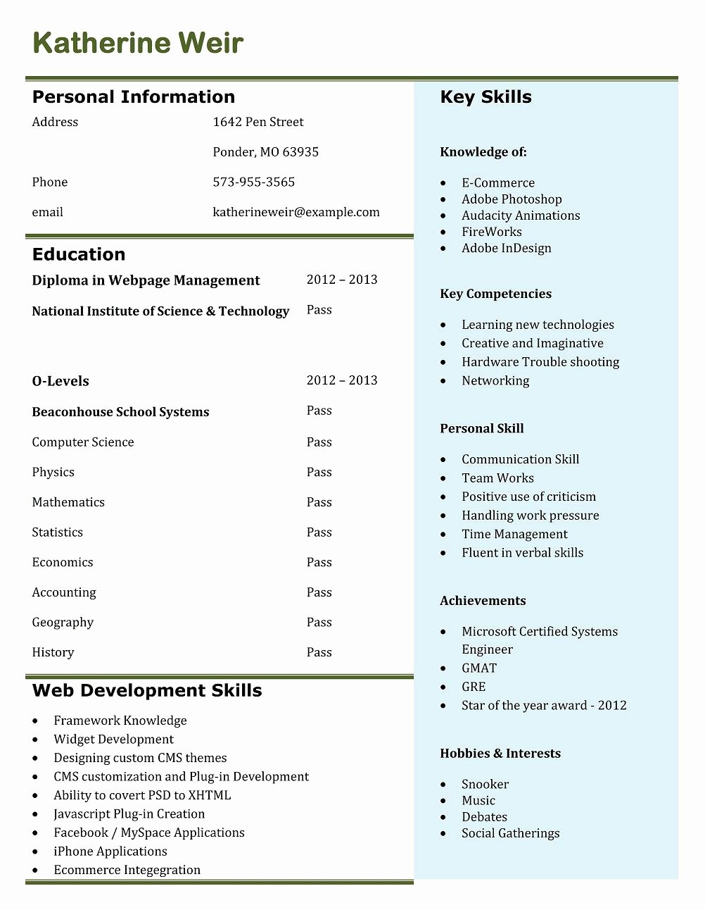 5 Best Creative Resume Examples for Jobs