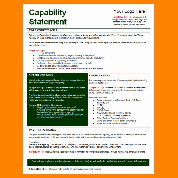 5 Capability Statement Template Word