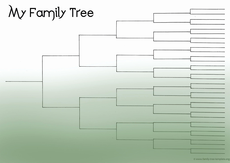 5 Generation Family Tree Outline Bamboodownunder