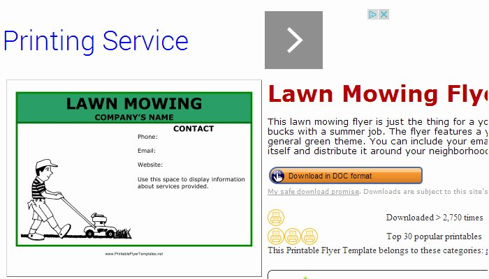 5 Lawn Mowing Flyer Templates