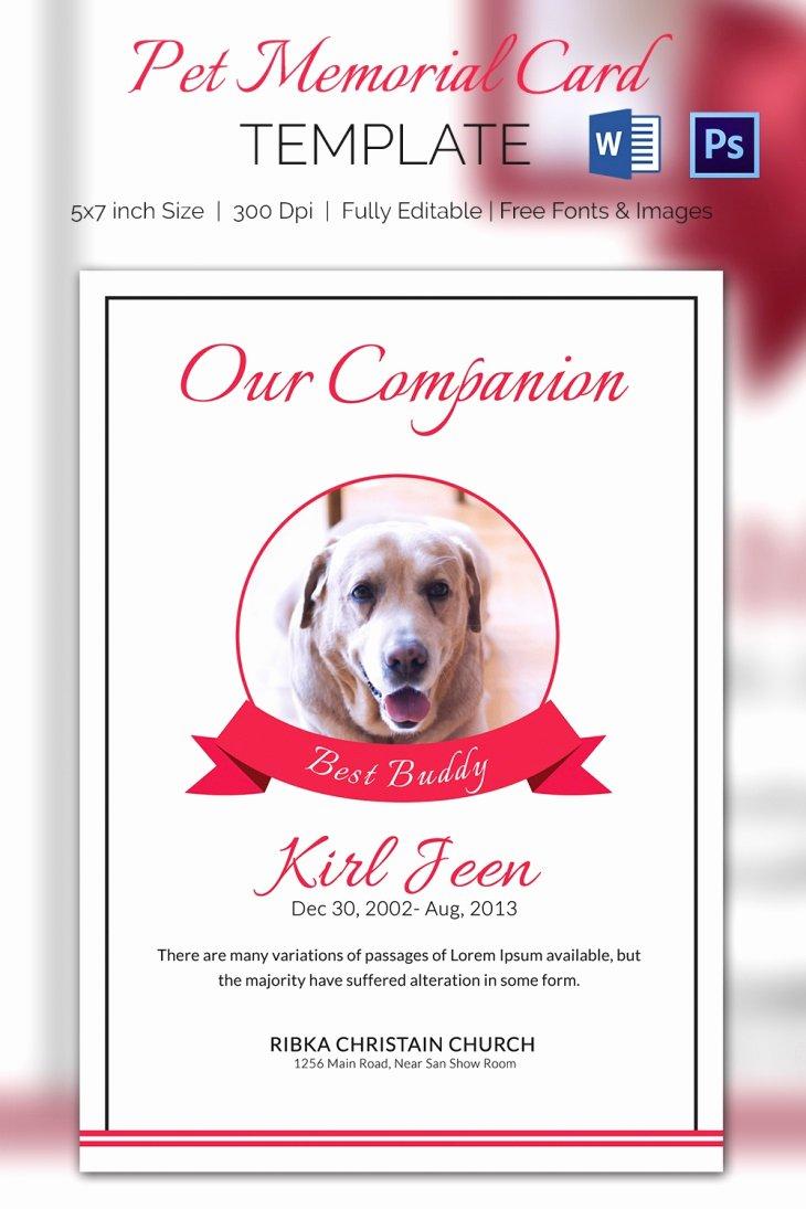 5 Pet Memorial Card Templates – Free Word Pdf Psd