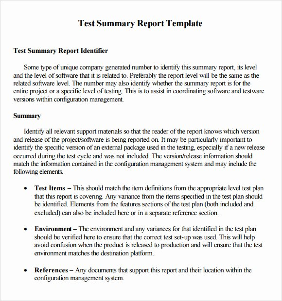 5 Summary Report Templates Excel Pdf formats