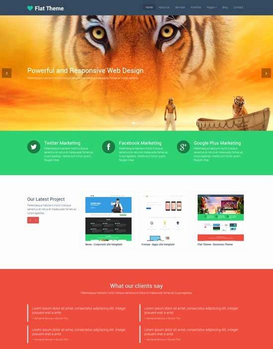 50 Best Flat Design Website Templates Free & Premium