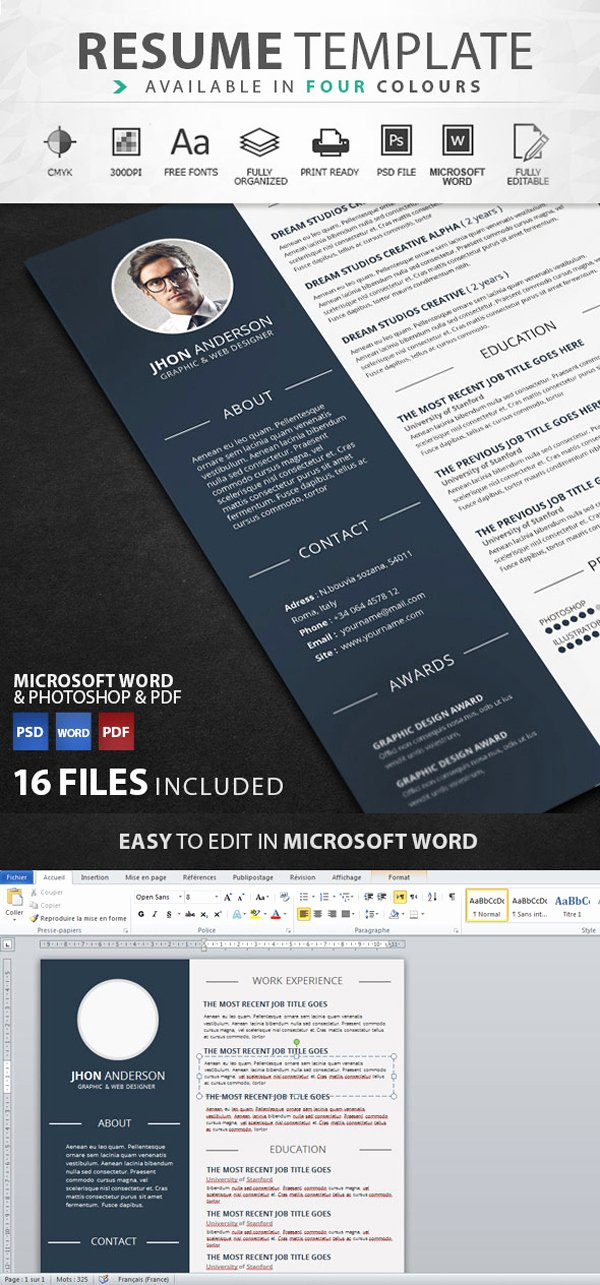 50 Best Resume Templates Design