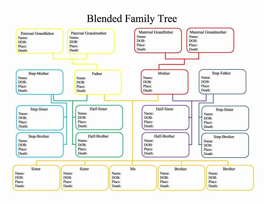 50 Free Family Tree Templates Word Excel Pdf