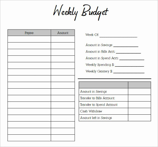 53 Bud Planner Templates Free Word Pdf Excel formats