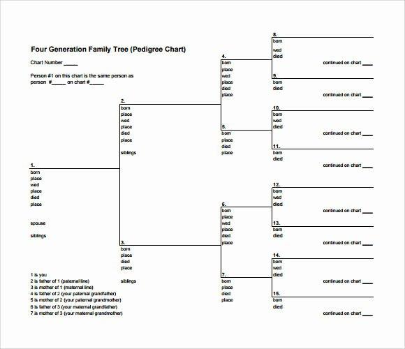 53 Family Tree Templates